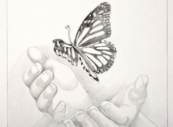 imagen de unas manos y una mariposa